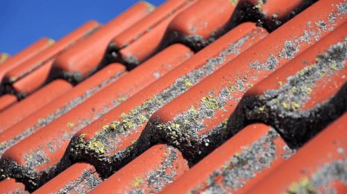 toit avec tuiles en terre cuite à nettoyer
